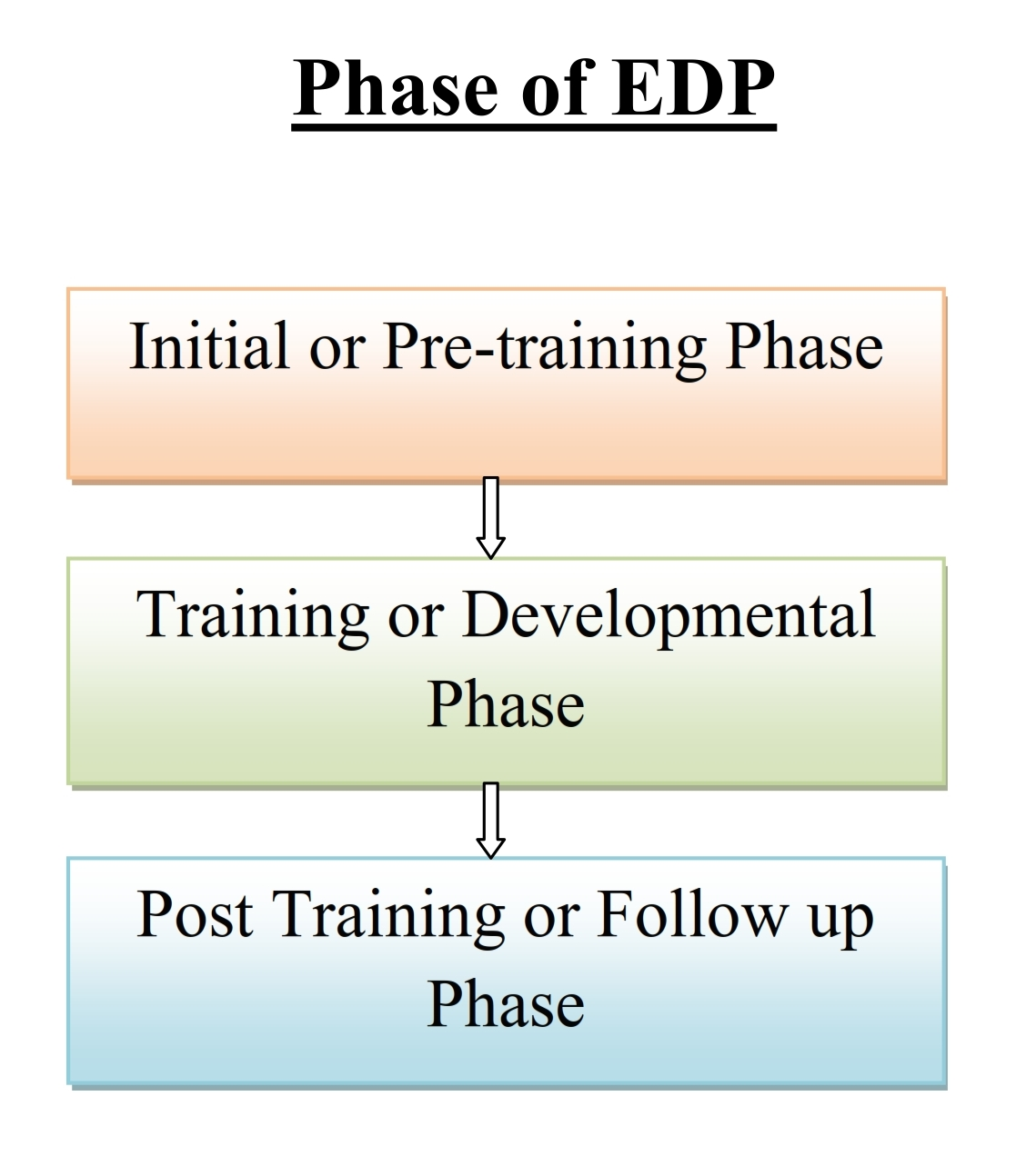 Simplynotes - Phases of EDP - Simplynotes