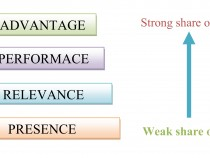 Brandz Model – Measuring Brand Equity Advantages and Disadvantages
