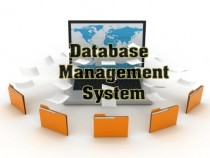 Database Management System (DBMS)- Meaning, Characteristics and Components