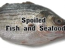 Spoilage of Fish and other Sea Foods