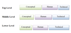 Management Skills- Conceptual, Human and Technical Skills