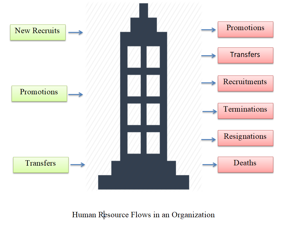 Flow of Human Resource in an Organisation