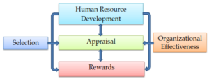 The Fombrun Model of HRM