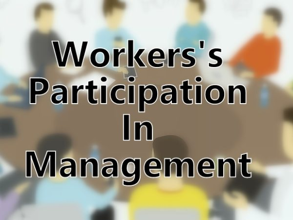 workers participation in management There are 2 distinct groups of people in an undertaking viz managers and workers performing respectively two separate sets of function.